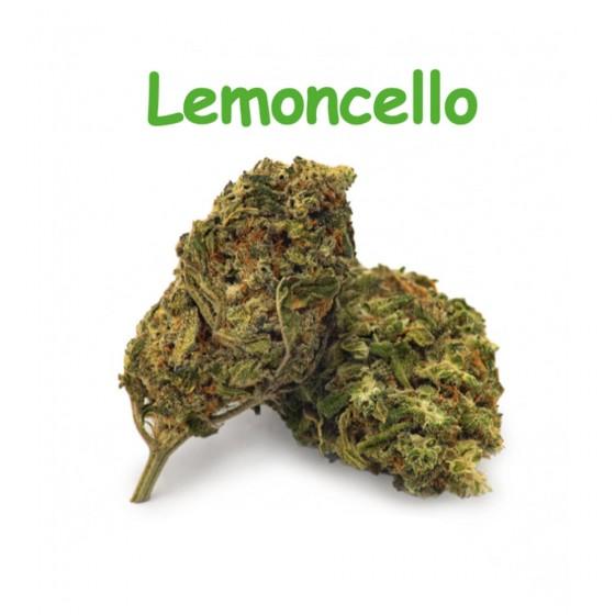 CBD Blüten Lemoncello - Dr Green