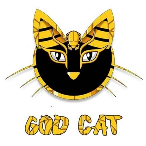 God Cat - Copy Cat