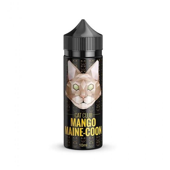 Mango Maine-Coon - Cat Club