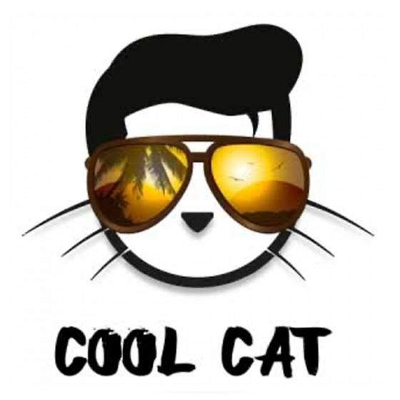 Cool Cat - Copy Cat